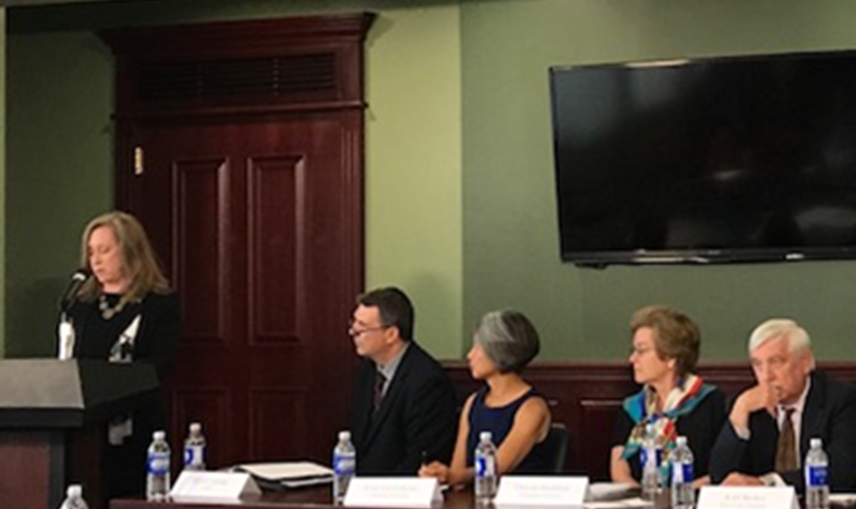 LESA Participates in Panel at the New York State Capitol